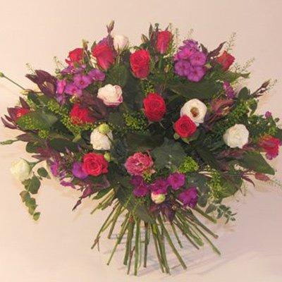 ים של כיף - פרחים קוליברי - רמת גן