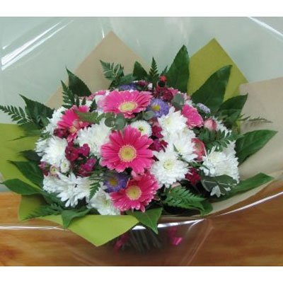כיף לי - פרחים קוליברי - רמת גן