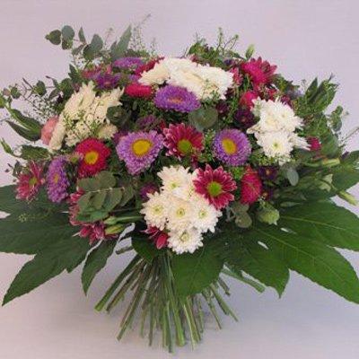 כמו פרח בר - פרחים קוליברי - רמת גן
