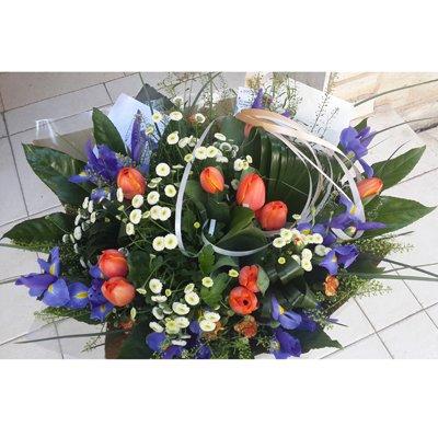 כתום כחול טוליפים - פרחי גולד - רחובות