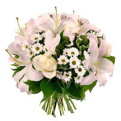 לבנה - פרחי גילי - רמת גן