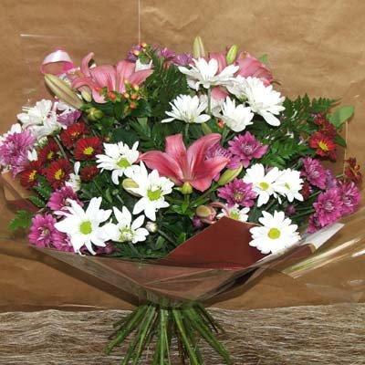 ליליות וחרציות - פרחים קוליברי - רמת גן