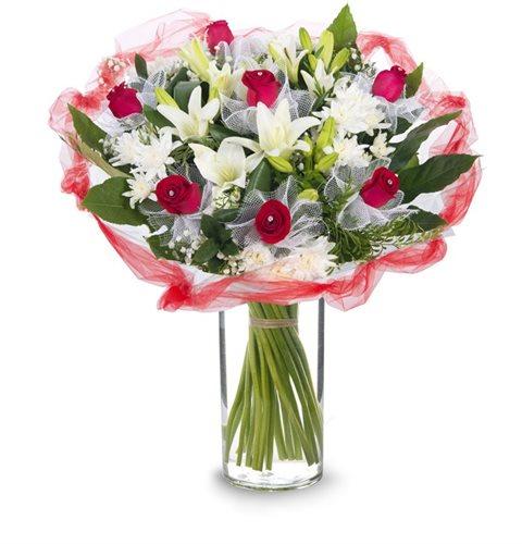 מולין רוז' - פרחי עירית - פתח תקווה