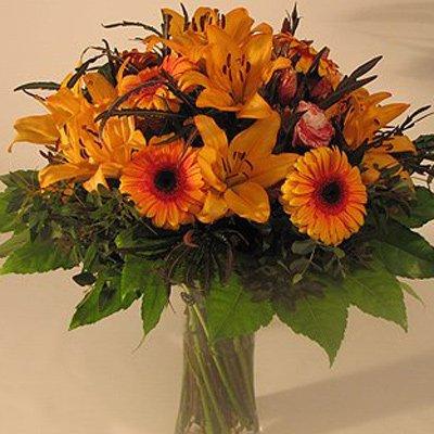 מתנה בכתום - פרחים קוליברי - רמת גן