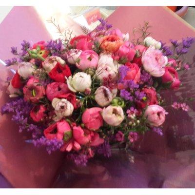 נוריות - פרחי גולד - רחובות