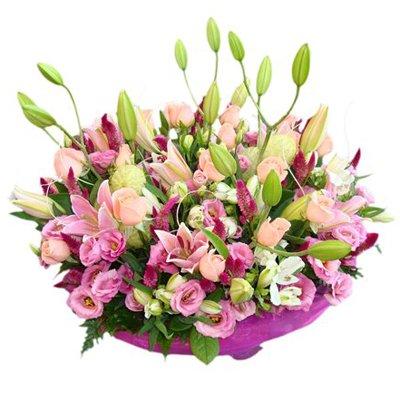 נשיקה ורודה - פרחי דליה בירושלים - ירושלים