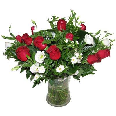 סיפור אהבה - תלתן פרחים - צפת