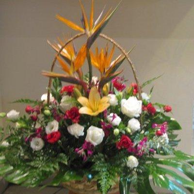 סלסלת אהבה - פרחים קוליברי - רמת גן