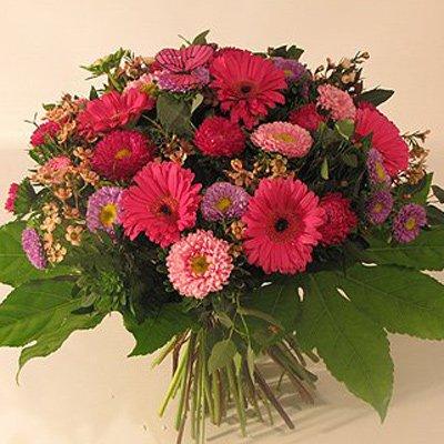 סתם כך - פרחים קוליברי - רמת גן