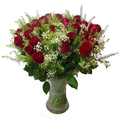 עלמה - תלתן פרחים - צפת