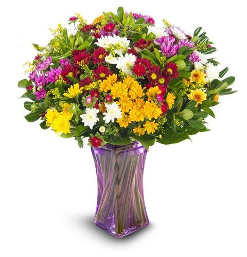 פריחות האביב - פרחי עירית - פתח תקווה