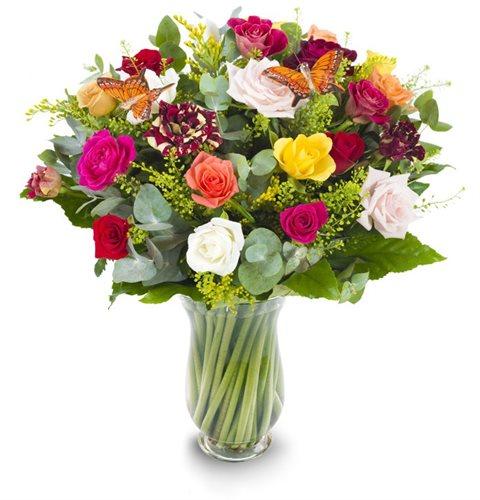 פרפר ופרח - פרחי עירית - פתח תקווה