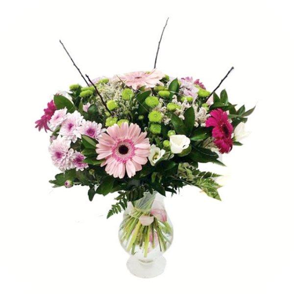 קסם - תלתן פרחים - צפת