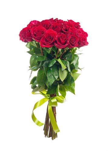 רוזה - פרחי עירית - פתח תקווה