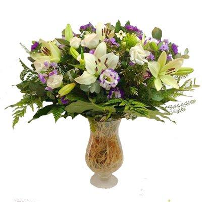 רויאל - תלתן פרחים - צפת