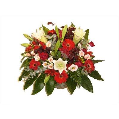שושנה - פרחי דליה - ירושלים