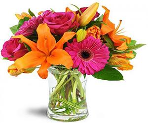 זרי פרחים - קנייה ברשת