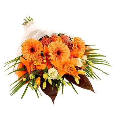 שקיעה בכתום - פרחי גילי - רמת גן