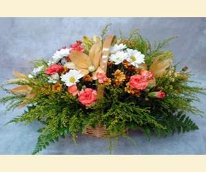 פרחים בשרון - משלוחי פרחים לשרון