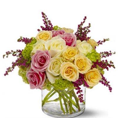 תערובת ורדים 6 - סחלבים - תל אביב