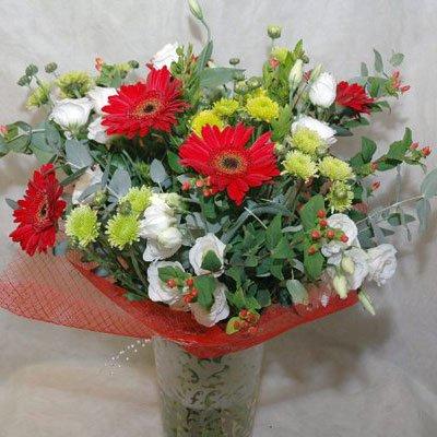 1 - פרחי שמש - אשדוד