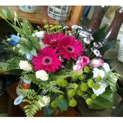 11 - פרחי סיתוונית - אשקלון