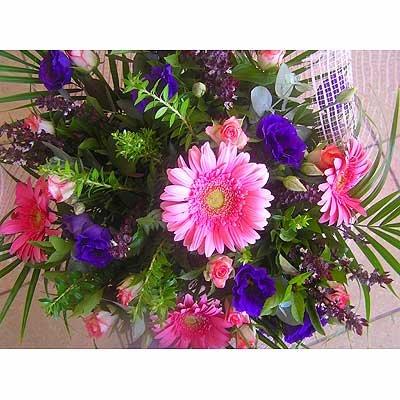 11 - פרחי שמש - אשדוד