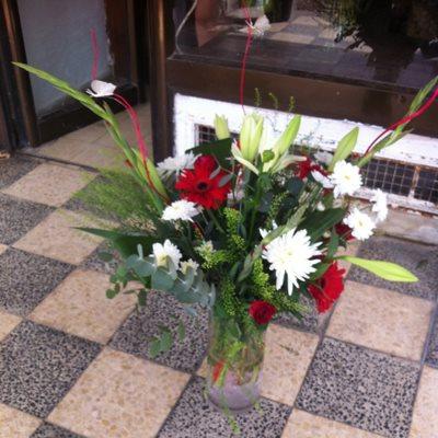 12 - פרחי סיתוונית - אשקלון