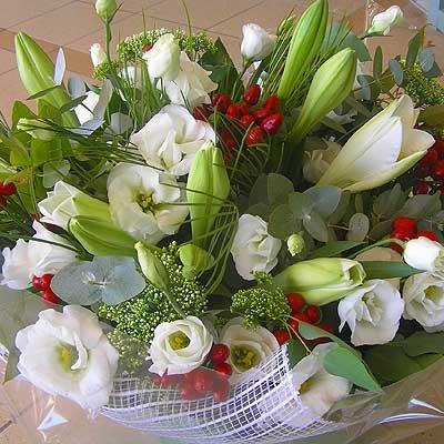 14 - פרחי שמש - אשדוד