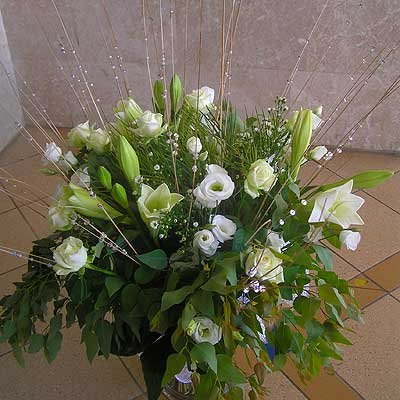 15 - פרחי שמש - אשדוד