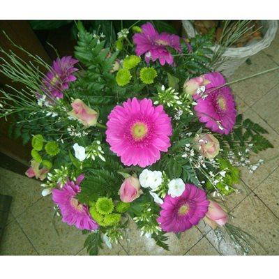 18 - פרחי סיתוונית - אשקלון