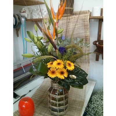 20 - פרחי סיתוונית - אשקלון