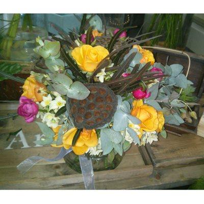 חגיגות - פרחי סיתוונית - אשקלון