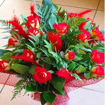 25 - פרחי שמש - אשדוד