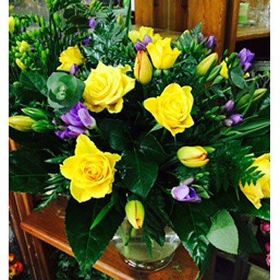 בוקר טוב - פרחי סיתוונית - אשקלון