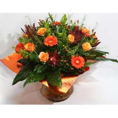 27 - פרחי שמש - אשדוד
