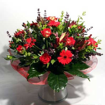 28 - פרחי שמש - אשדוד
