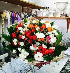 אש לוהטת - פרחי סיתוונית - אשקלון