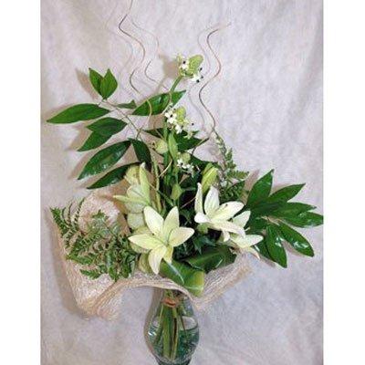 3 - פרחי שמש - אשדוד