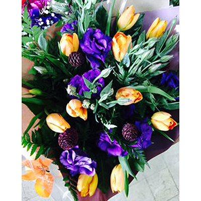 הרמוניה - פרחי סיתוונית - אשקלון