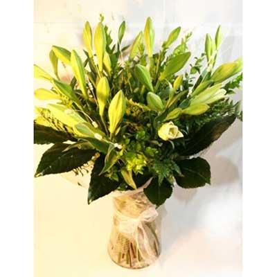 32 - פרחי שמש - אשדוד