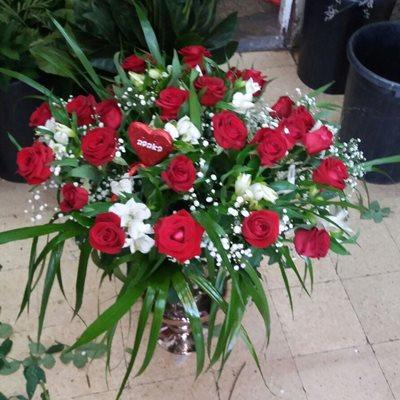 32 - פרחי סיתוונית - אשקלון