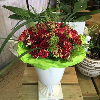 חיבוקים - פרחי סיתוונית - אשקלון