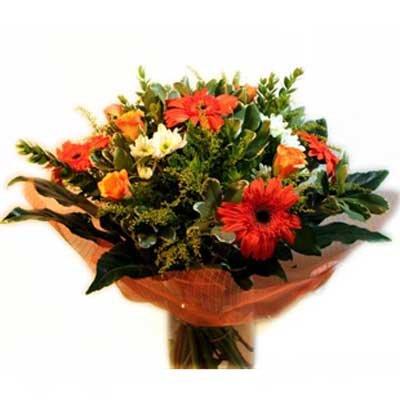 34 - פרחי שמש - אשדוד
