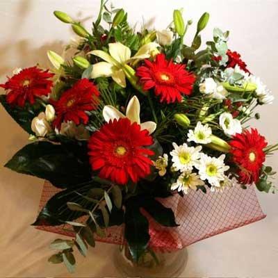36 - פרחי שמש - אשדוד