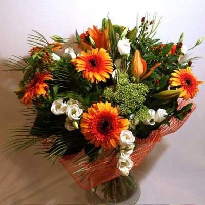 37 - פרחי שמש - אשדוד