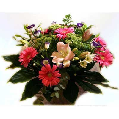 38 - פרחי שמש - אשדוד