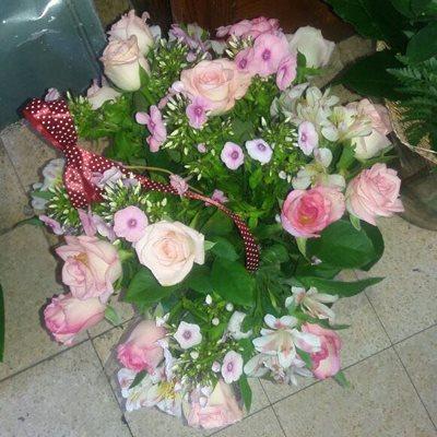 38 - פרחי סיתוונית - אשקלון