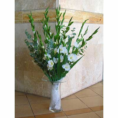 39 - פרחי שמש - אשדוד