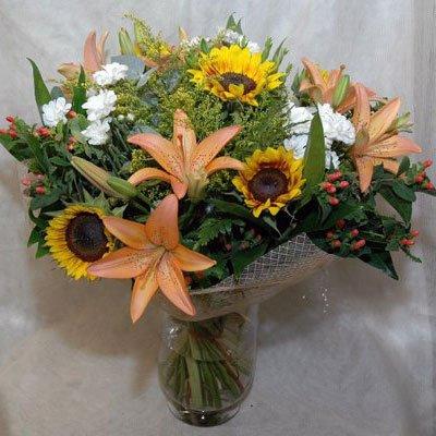 4 - פרחי שמש - אשדוד